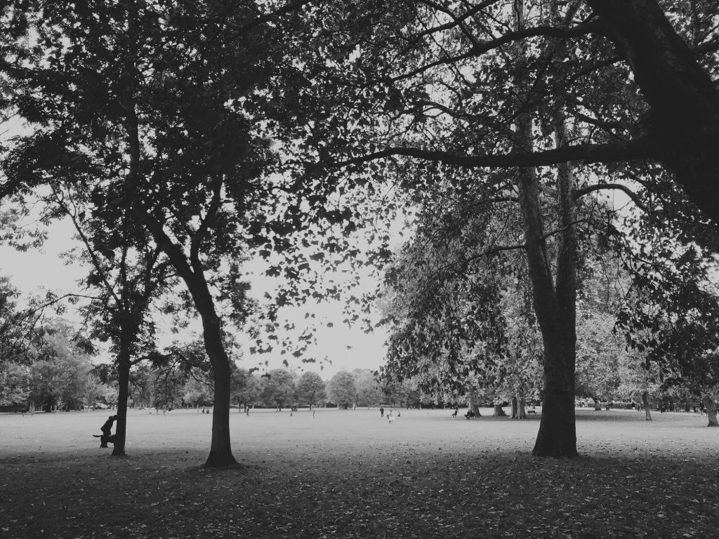 Ravenscourt_Park