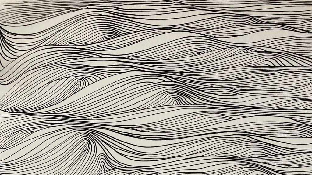 05 Swell Dispersion - Stephan Barrett and Sylvia Hallett